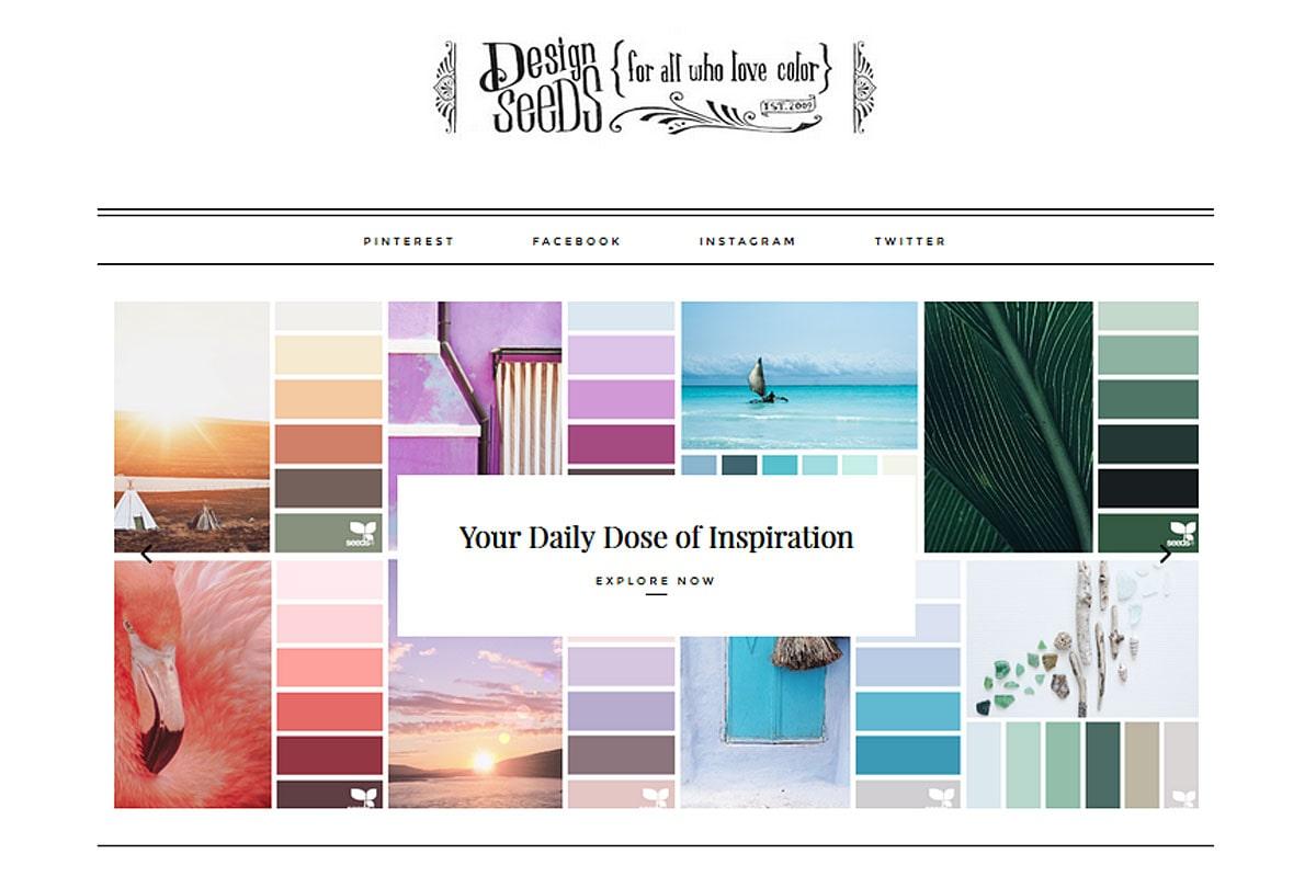 kolory-marki-design-seeds-gł-min
